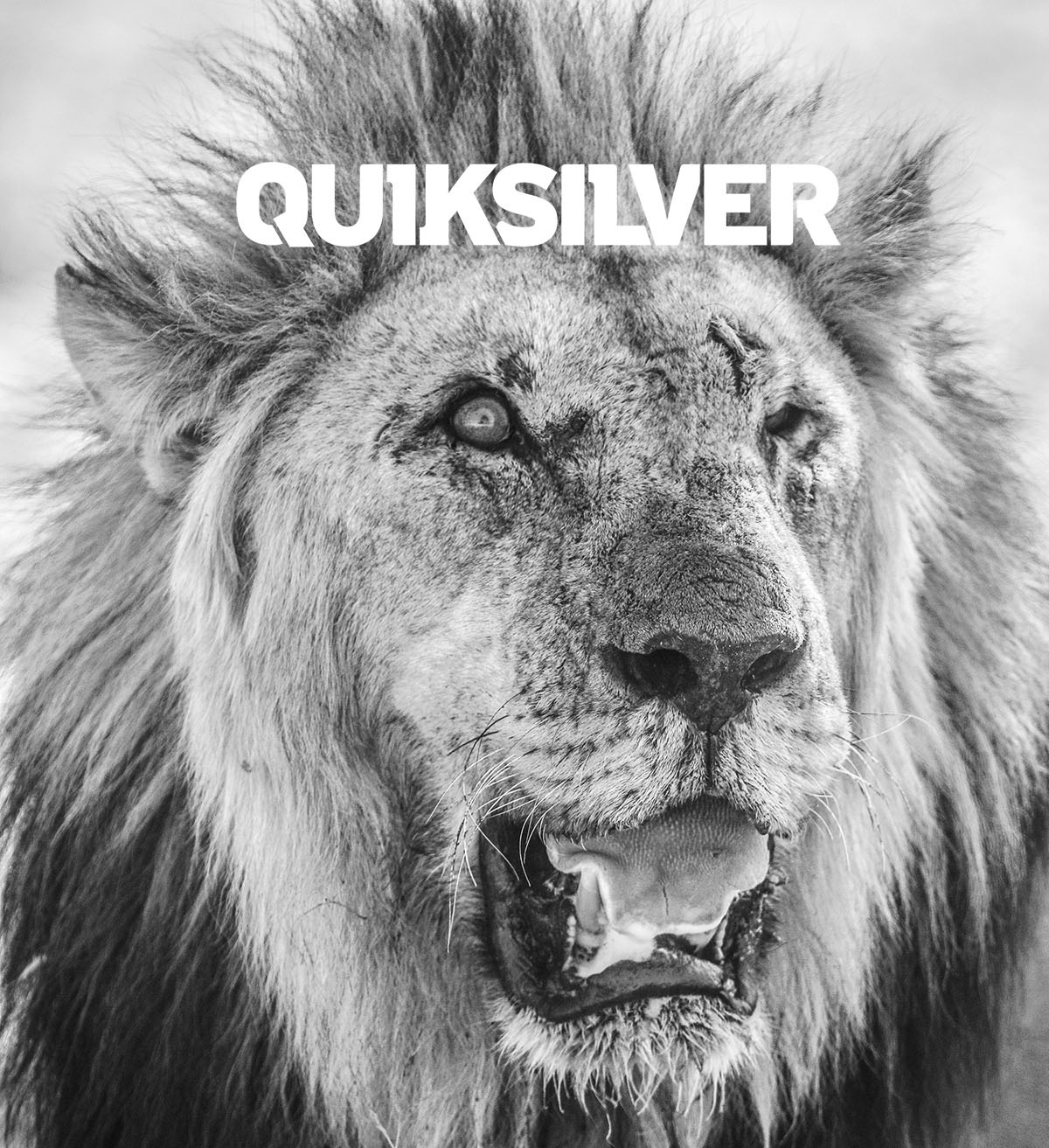 Shooting for Quiksilver in Namibia